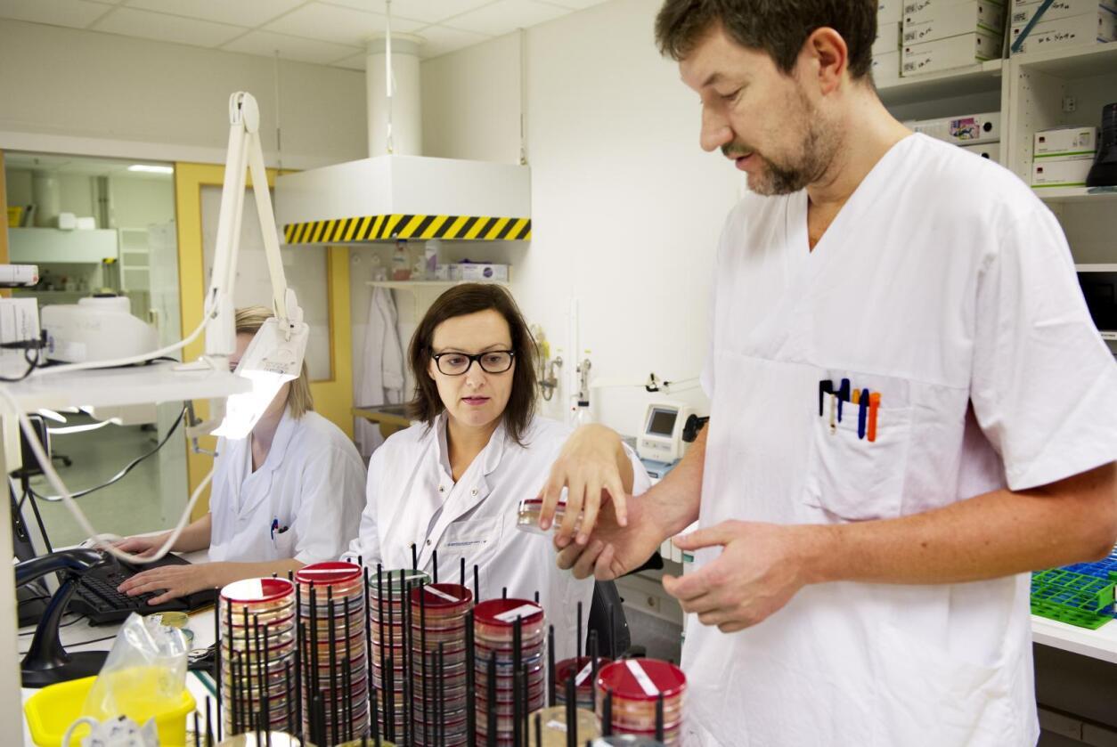 Atombombe: Professor i mikrobiologi Gunnar Skov Simonsen beskriver antibiotikaet kinoloner som en atombombe. - Den rammer veldig mange bakterier samtidig, og gode data underbygger at måten kinoloner virker på i stor grad fremmer antibiotikaresistens. Foto: Ingun A. Mæhlum