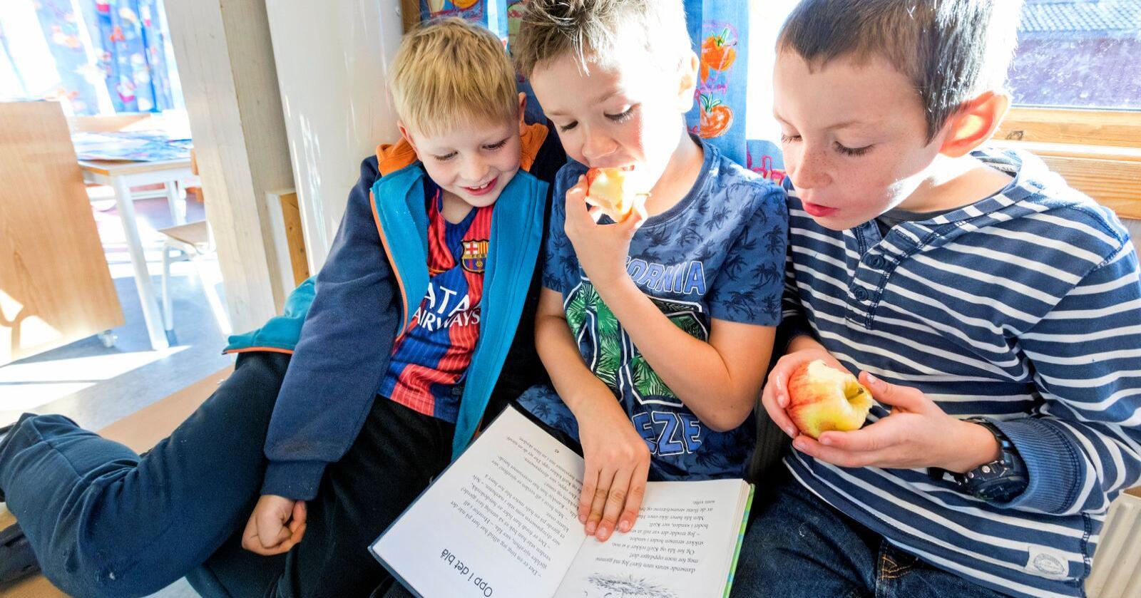 Å treffe spiker og smøre motor er viktig, men å ha gode leseferdigheter og rik språkforståelse er også avgjørende for god læring, et godt liv, skriver Maria Almli. Foto: Gorm Kallestad / NTB scanpix