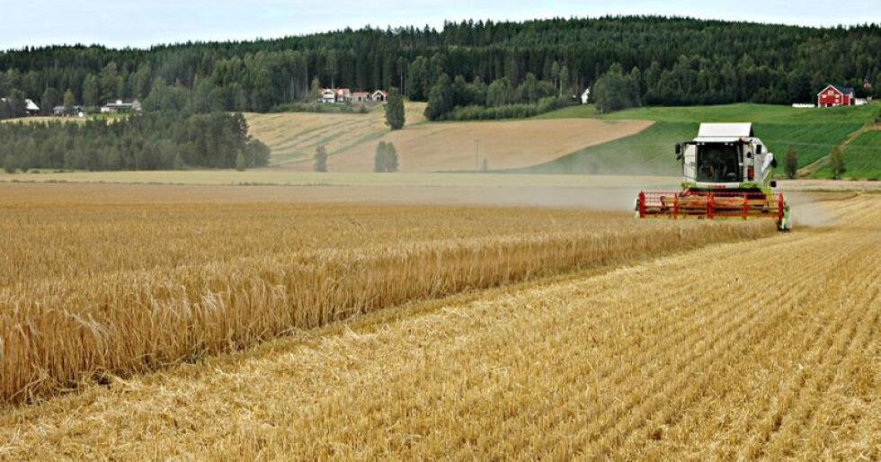 Utfordret: Landbruks- og matminister Olaug Bollestad ble utfordret på selvforsyning med ny regjering under kornmøte i Askim, men vil ikke svare på hvorvidt det i dag er fare for forsyningssvikt. (Arkivfoto)