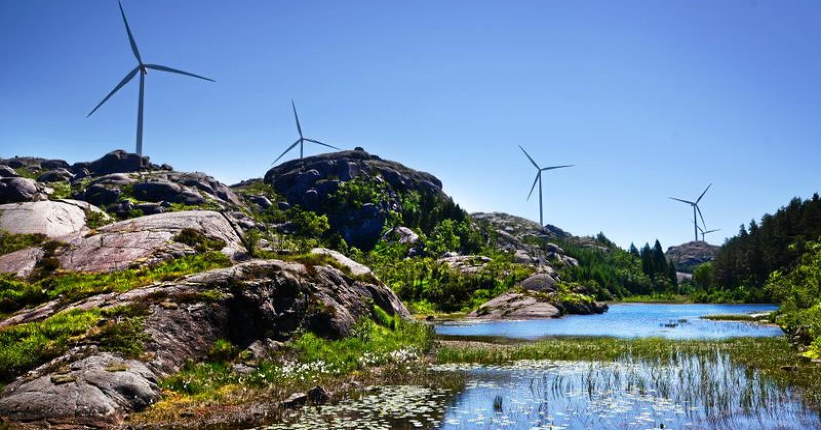 Vindkraft: Byggjing av vindmøller har førd til debatt mange stader. Vind vil vere ei viktig energikjelde i framtida. Då må lokal aksept ligge til grunn, skriv Tore Storehaug. Foto: Siri Juell Rasmussen