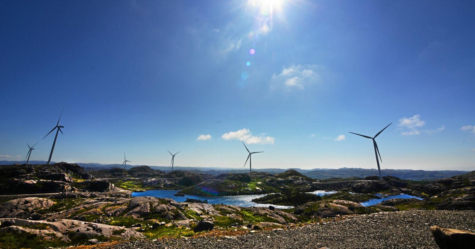 Vindkraft: Å bygge ned verdifull natur for å produsere fornybar energi er ikke et godt klimatiltak, skriver innsenderne. Foto: Siri Juell Rasmussen