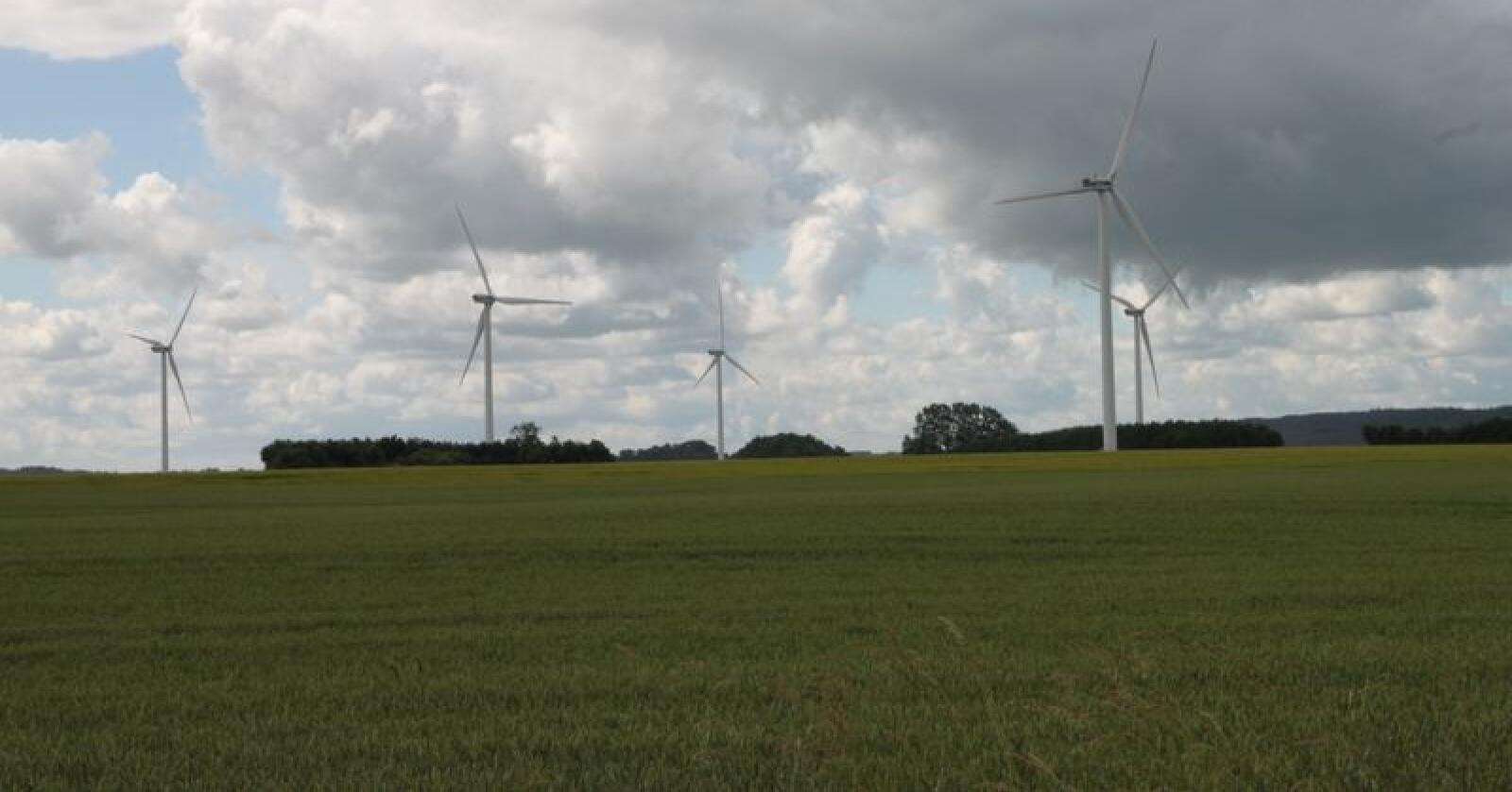Ikke-kvotepliktig sektor i Danmark, herunder jordbruket, skal kutte klimagassutslipp i nesten samme omfang som Norge. Bildet er tatt på Jylland i Danmark. Foto: Øystein Heggdal