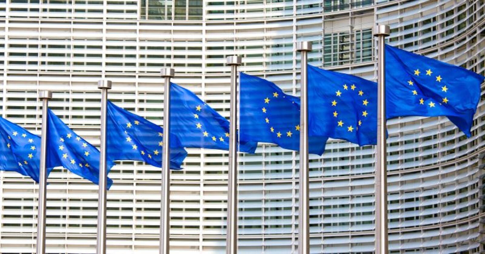 Medlemsstatene i EØS har totalt 212 pågående overtredelsessaker. Foto: Mostphotos