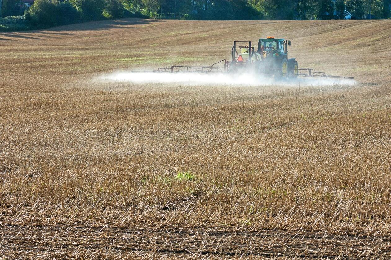 Ugrassprøyting mot kveke i stubbåker. Foto: Erling Fløistad / Nibio