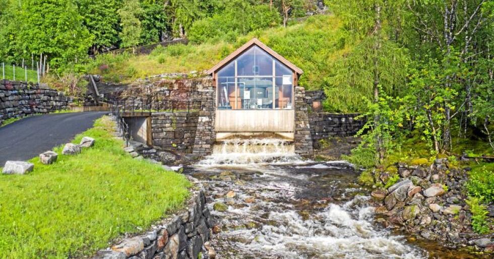 Skammelig? Norske småkraftverk skader arter. Iallfall lokalt. Foto: Heiko Kubler