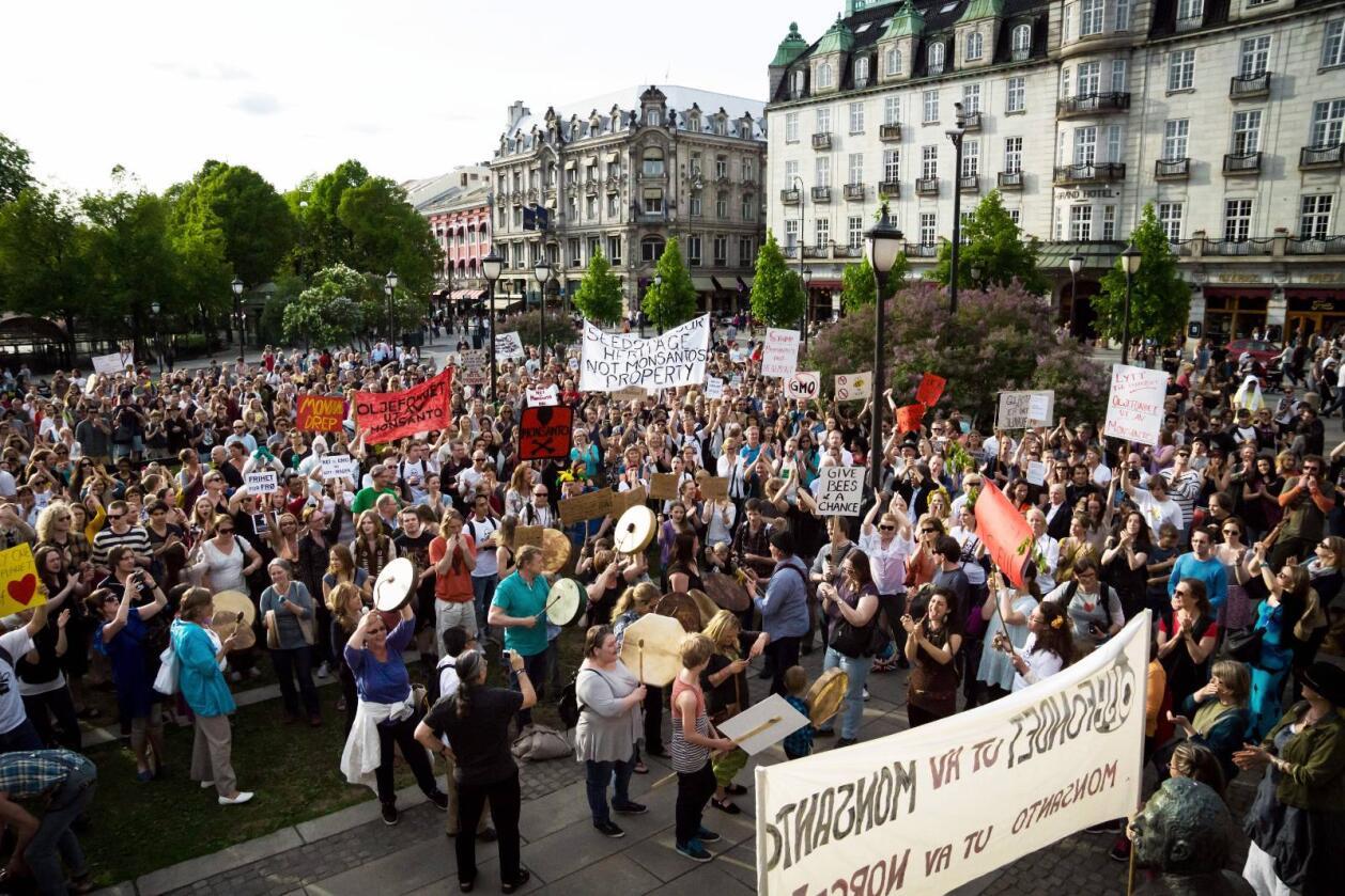 2013: I fjor marsjerte om lag 1500 personer mot Monsanto i Oslo, for å demonstrere sin motstand mot genmodifisering. I år demonstreres det i tre norske byer. Foto: Monica Løvdahl/Miljøpartiet De Grønne