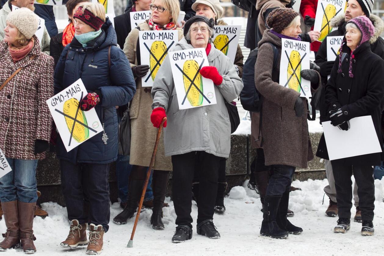 GMO-skepsisen er stor i Norge. Her fra en demonstrasjon utenfor Stortinget i 2012. Foto: Heiko Junge/NTB Scanpix