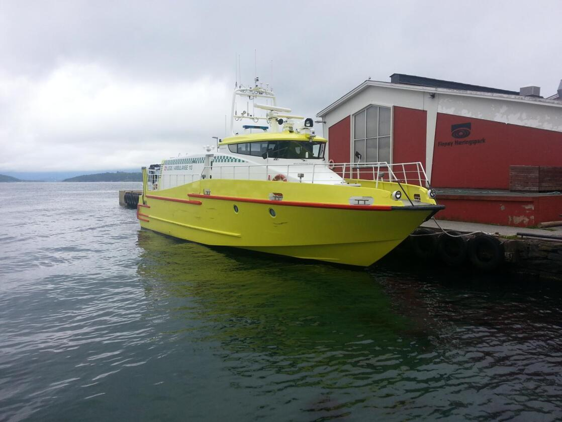 Skyssbåt: M/S Rygerdoktoren er båten som frakter Berit Undheim Bergøy ut til syke dyr på øyene i Ryfylke. Den brukes også som skyssbåt av legene. (Foto: Rødne og Sønner/Ole Henrik Olsen)