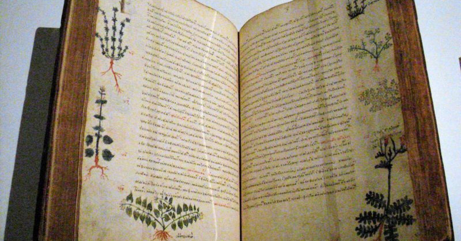 Den vitskaplege boksamlinga ved Oslo katedralskule er ei viktig kjelde når forskarane no skal kartleggje plantebruken i Norden sidan vikingtida. Eit viktig verk er De Materia Medica av den greske legen Dioscorides. Dette eksemplaret høyrer heime ved Cluny-museet i Paris.