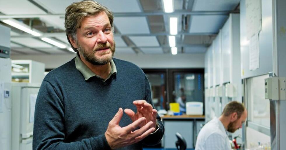 Medisinsk fagdirektør Steinar Madsen i Legemiddelverket sier situasjonen rundt brexit er bekymringsfull, særlig for små land som Norge med lite medisinproduksjon selv. Foto: Berit Roald / NTB scanpix
