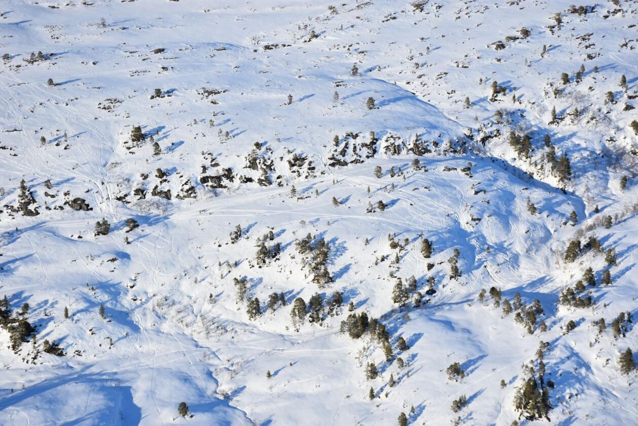 Dette bildet av snøskuterspor i marka i Trøndelag tok Statens naturoppsyn søndag 14. mars i år. Denne dagen dokumenterte piloten 14 ulike områder med ulovlig snøscooterkjøring. Foto: Statens naturoppsyn