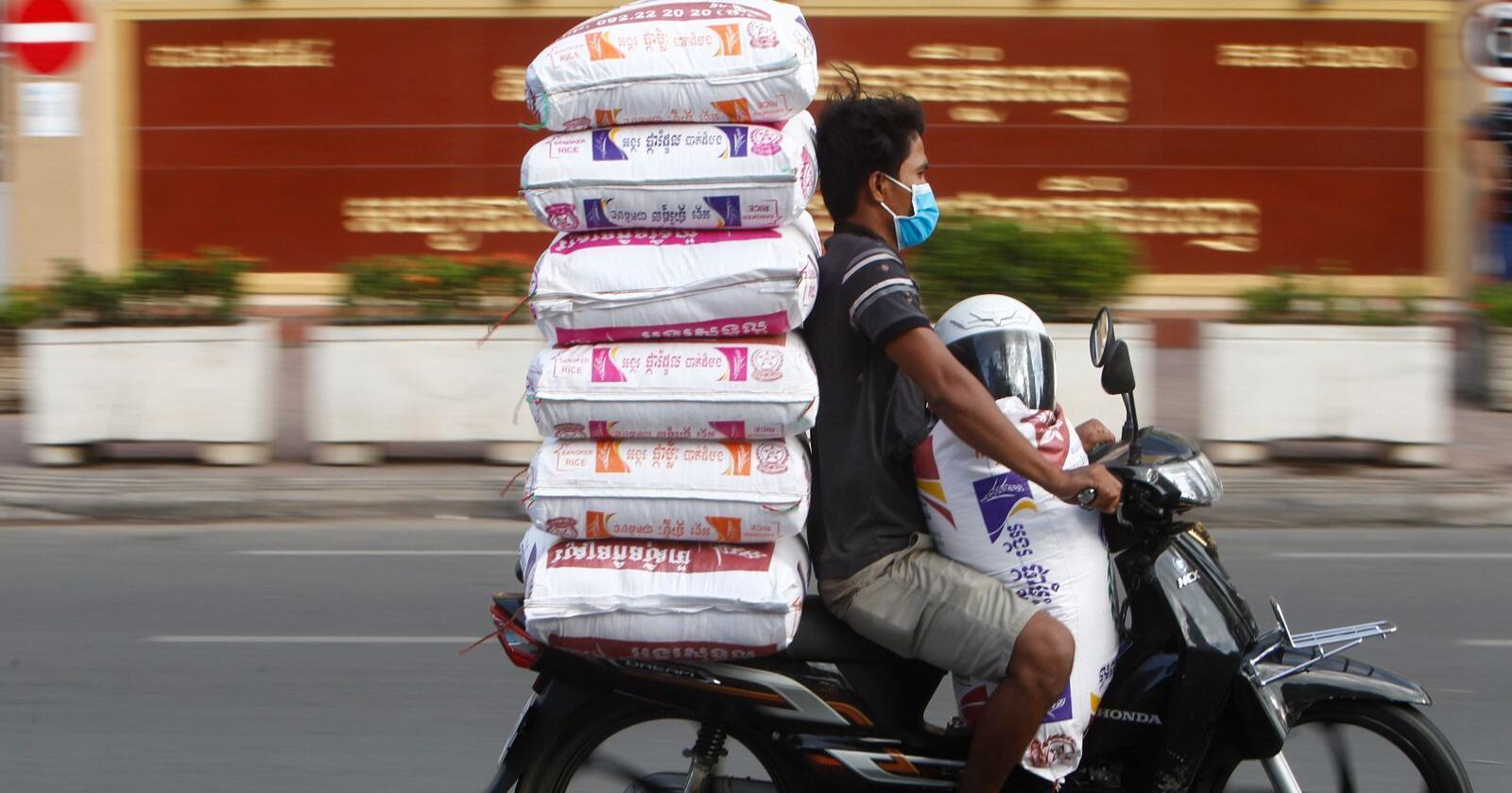 Det svarer seg for klimaet å bytte fra ris til poteter, viser en studie publisert i Nature Food. Illustrasjonsfoto: Heng Sinith / AP / NTB