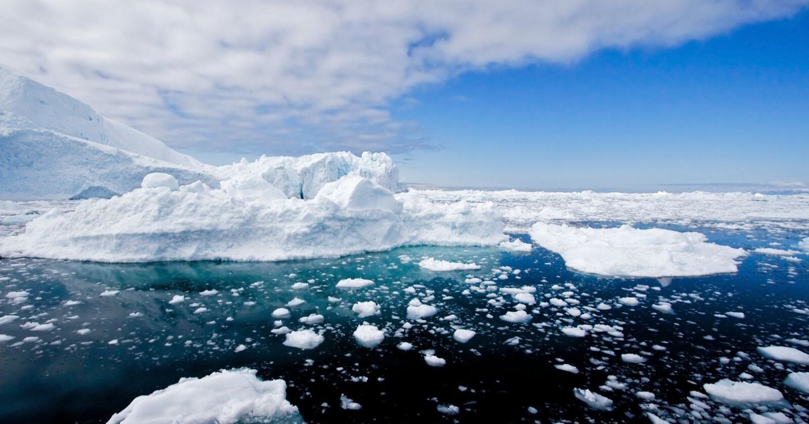 Iskanten er overgangen mellom åpent hav og havis i Arktis. Den har høy økologisk sårbarhet og er av avgjørende betydning for en rekke rødlistede arter. Iskanten er i bevegelse hele året. Bildet er fra Aktis. Foto: Mostphotos