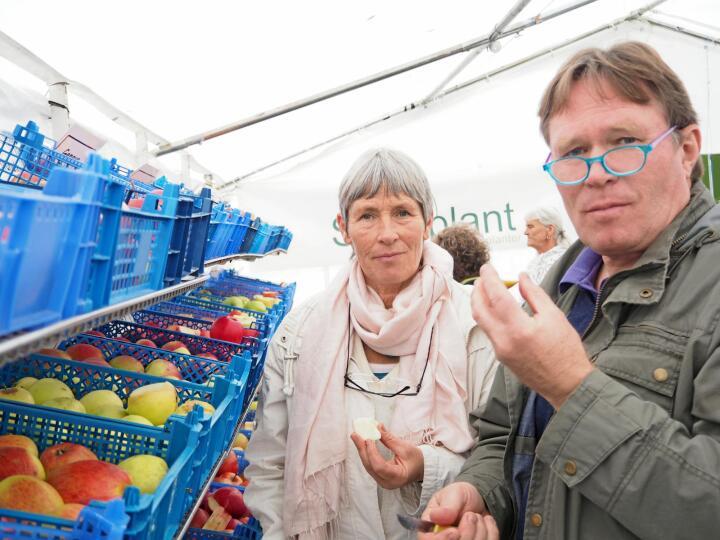 Smaksfest: Dagny Torp og Halvor Torp har reist til Gvarv for å finne de beste eplene. – Jeg vil ikke ha epler som smaker kommodeskuff, fastsetter Dagny. Broren er kommet til Gvarv for å plukke ut epletrær til sin nye espalier. Alle foto: Marte Østmoe