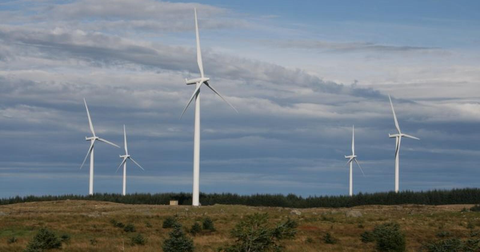 Vindmøller på Høg-Jæren i Rogaland, som er ein av dei største vindkraftparkane i landet. Foto: Bjarne Bekkeheien Aase