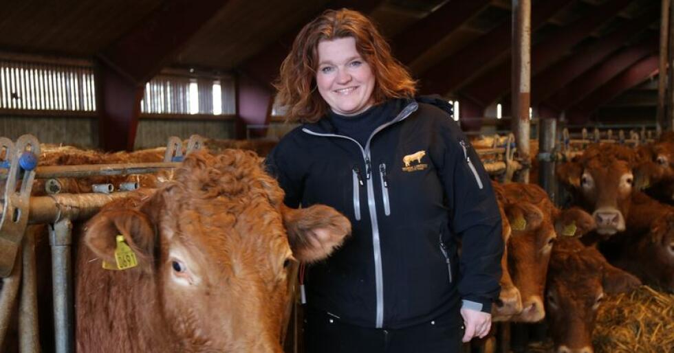 Funksjonelle dyr: Rita Steinvik prioriterer å avle fram funksjonelle dyr med godt lynne og gode kalvinger. Med stort og smått har hun 170 Limousin storfe i fjøset. Foto: Lars Olav Haug