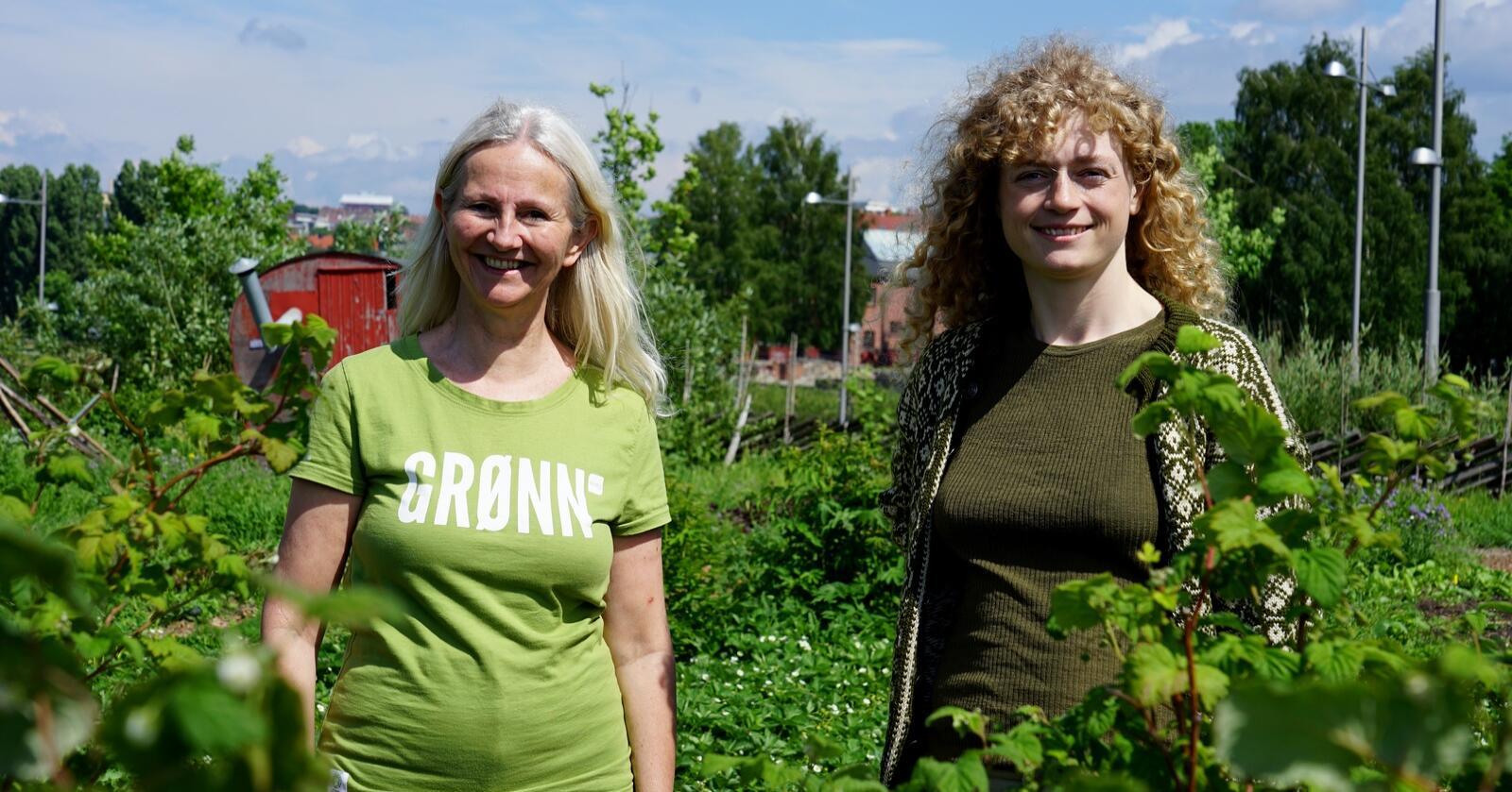 Benedicte Lund og Margit Fausko, toppkandidater til Stortinget for MDG i henholdsvis Østfold og Buskerud presenterte Miljøpartiet de Grønnes alternative jordbruksoppgjør tirsdag. Foto: Lars Bilit Hagen