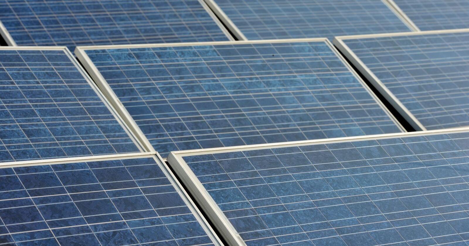 Solcellepaneler på taket av et hus. Foto: Frank May / NTB