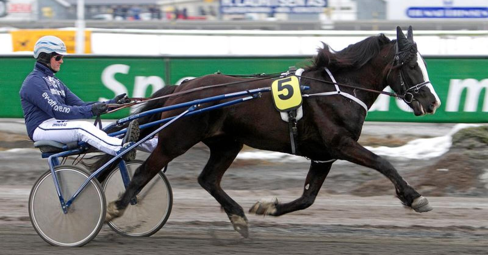 Taper: Storspillere på hest må fortsatt få tape over 20.000 kroner i måneden, skriver innsenderne. Foto: Anders Kongsrud/Hesteguiden.com