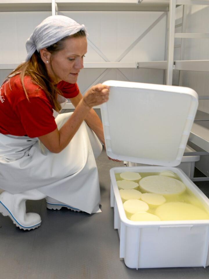 Nylaget salatost(fetaost) skal ligge til modning i åtte uker. Rygge meieri AS ble gjennåpnet av Sølvi Gammelsrød i 2020. Foto: Mariann Tvete