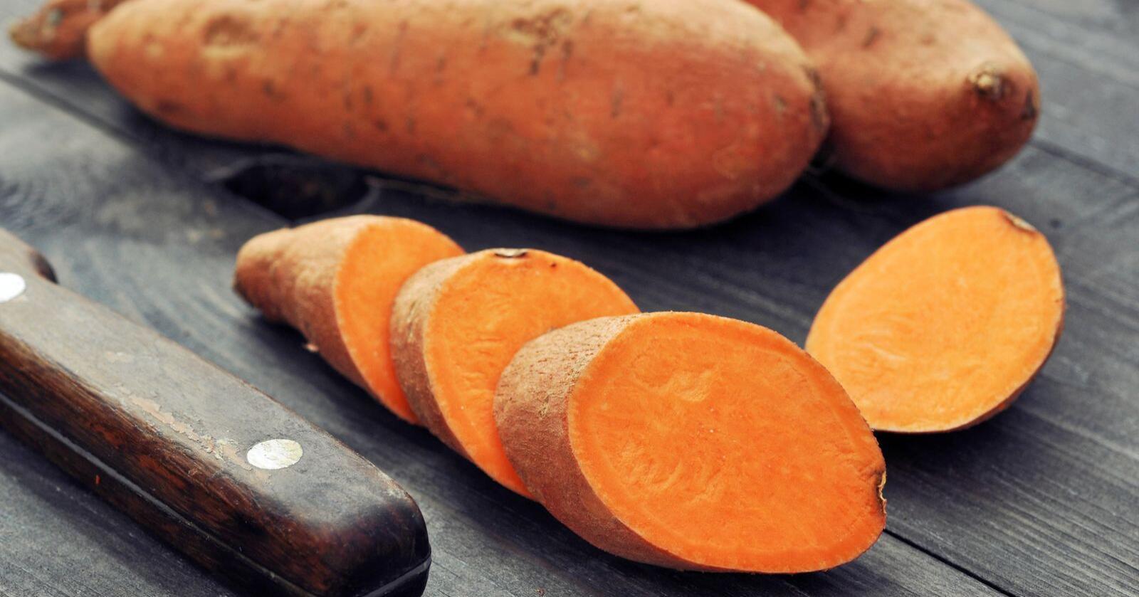 Norske bønder er innovative og prøver gjerne ut dyrking av nye matvekstsorter som forbrukerne etterspør. Søtpotetdyrking er et eksempel, skriver Bjørn Vidar Vangelsten. Foto: Colourbox