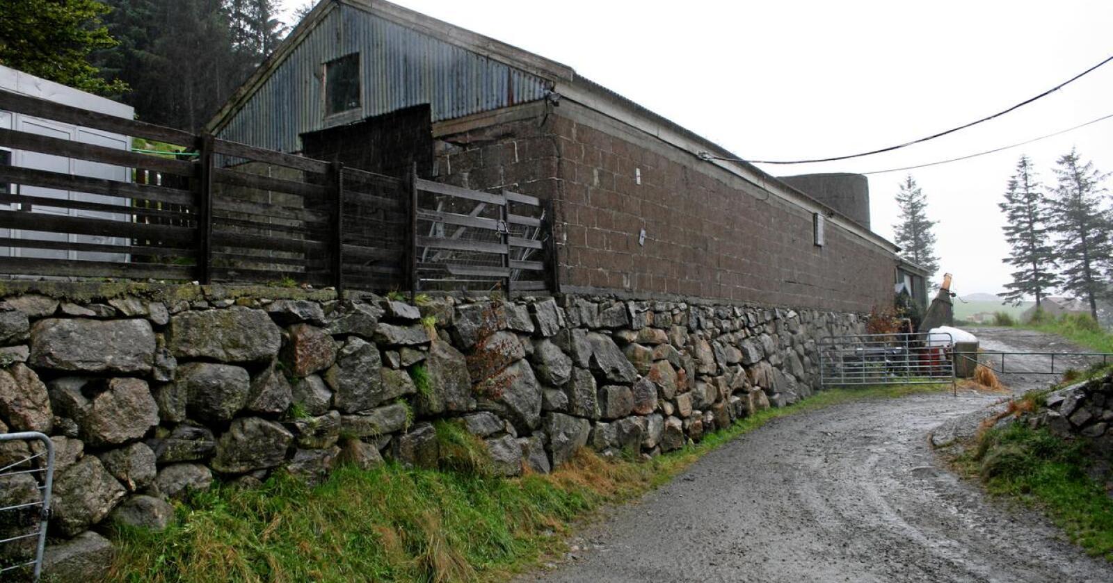 Ombyggingsprosjekt: Mange fjøs fra etterkrigstiden kan brukes til nye ting. Foto: Bjarne B. Aase