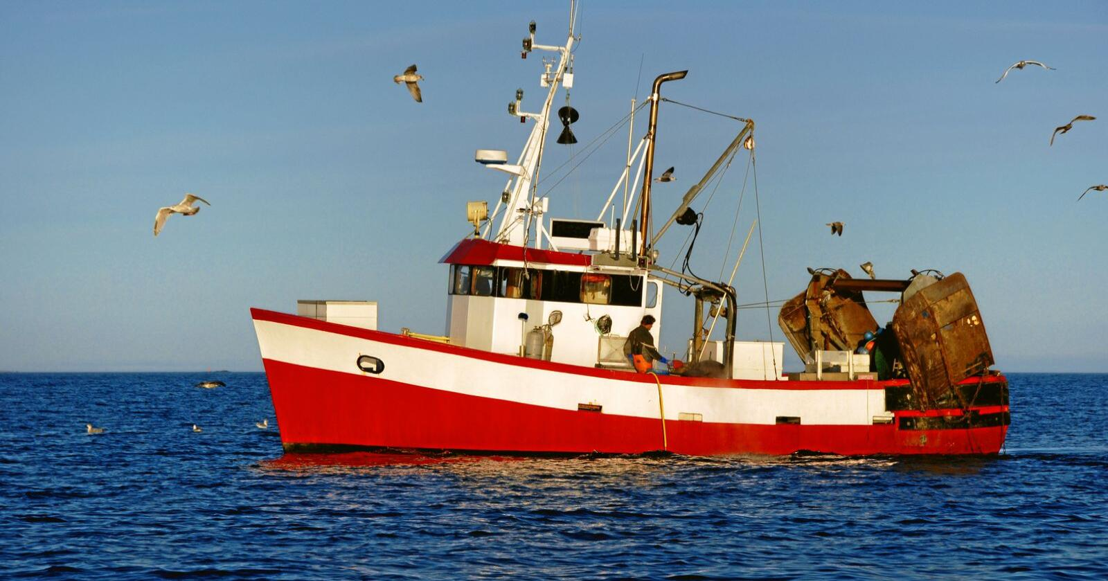 Nye avgifter: Fiskere må punge ut for 100 millioner i ny kontrollavgift. Foto: Mostphotos