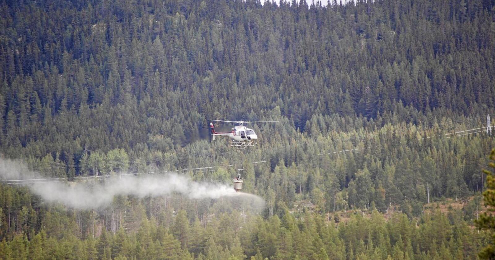 Skoggjødsling: Ett av de ferdig utredede klimatiltakene innen skog som ikke er oppskalert. Foto: Nibio