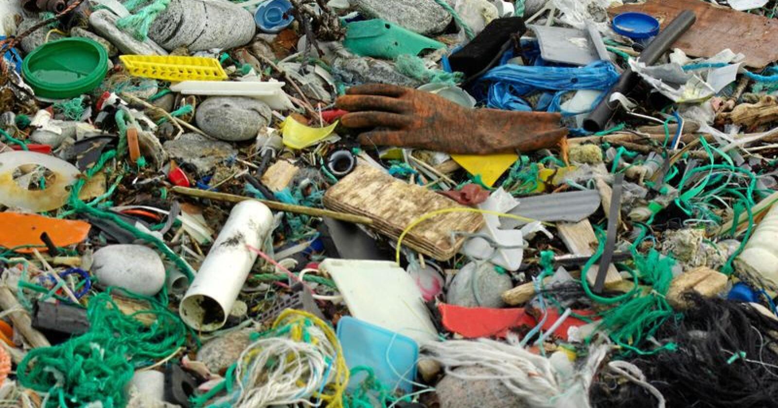 Alle som arbeider for å hindre at plast havner i naturen kan søke om midler. Enten det er for å redusere forsøplingen, øke gjenvinningen eller redusere bruken av plastposer. Foto: Bo Eide