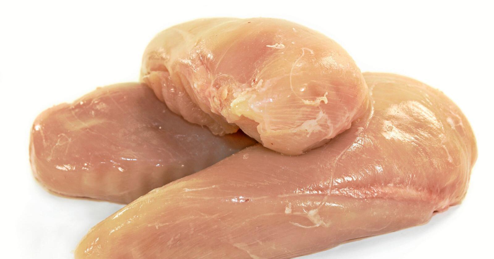 EU har importforbud mot kyllinger som er blitt vasket med klor, fordi unionen frykter at det er en sovepute for dårlig hygiene i amerikansk fjørfeindustri. Nå vil USA overtale EU til å snu. Foto: Nationen