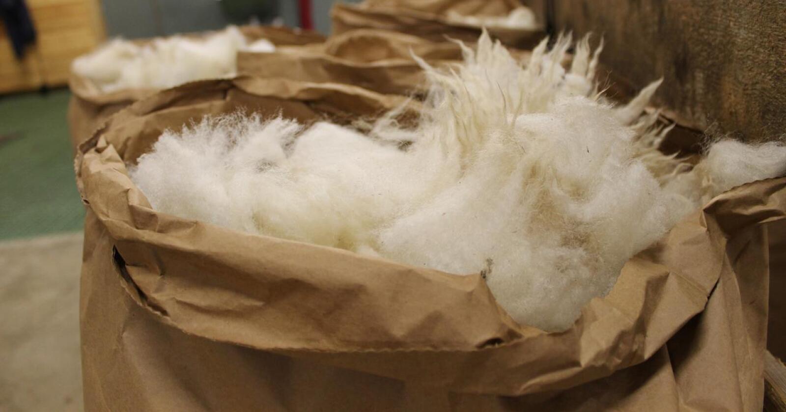 """Pådriverne bak prosjektet """"VerdifULL""""  har sett seg lei på at så mye norsk ull ikke blir brukt. Foto: Marit Glærum."""