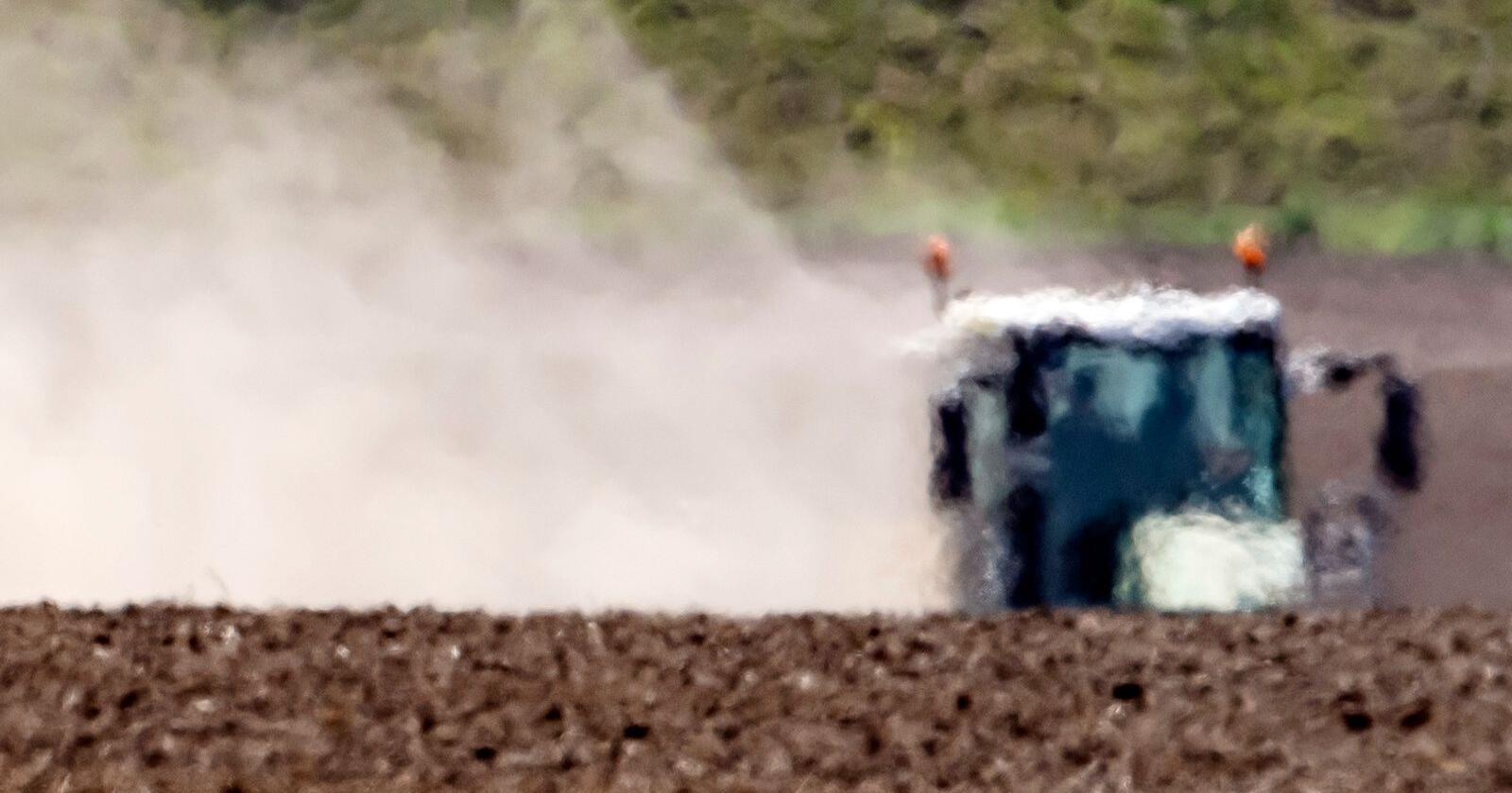 En bonde i Bad Lauchstaedt i Tyskland pløyer åkeren sin i hetedisen. En studie fra nederlandske forskere spår at en tredel av verdens befolkning kan lide under ekstrem hete om 50 år. Foto: AP / NTB scanpix