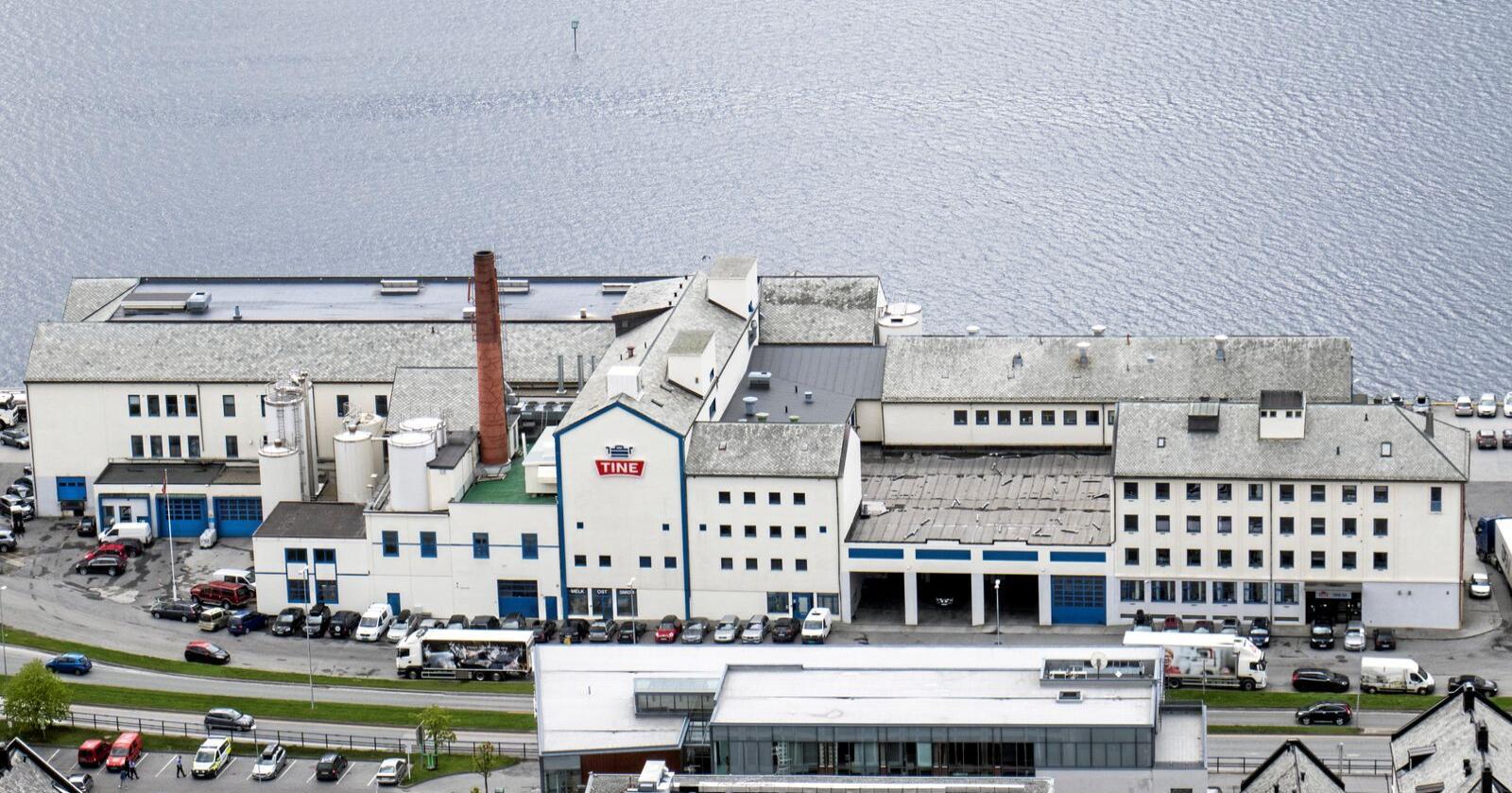 Tines meieri i Ålesund er ett av de 34 gjenværende meierier og terminaler Tine har. Foto: Paul Kleiven / NTB
