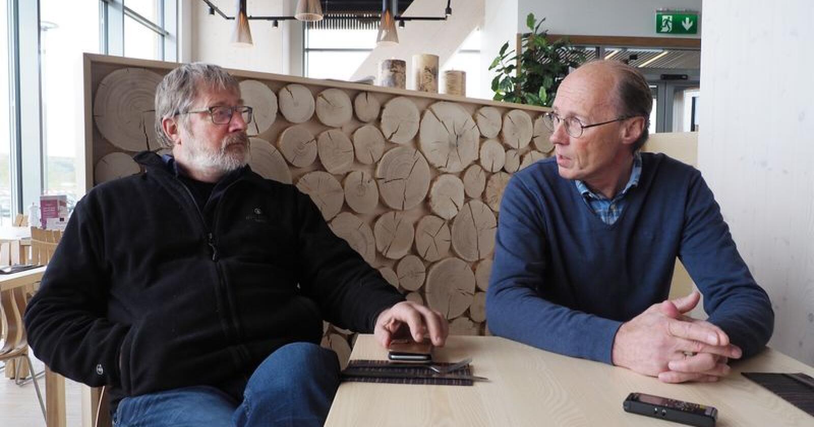 Styreleder i Glommen Skog, Ole Theodor Holth, og Terje Uggen, styreleder i Mjøsen Skog, arbeider for en fusjon av skogeierlagene. Siri Juell Rasmussen