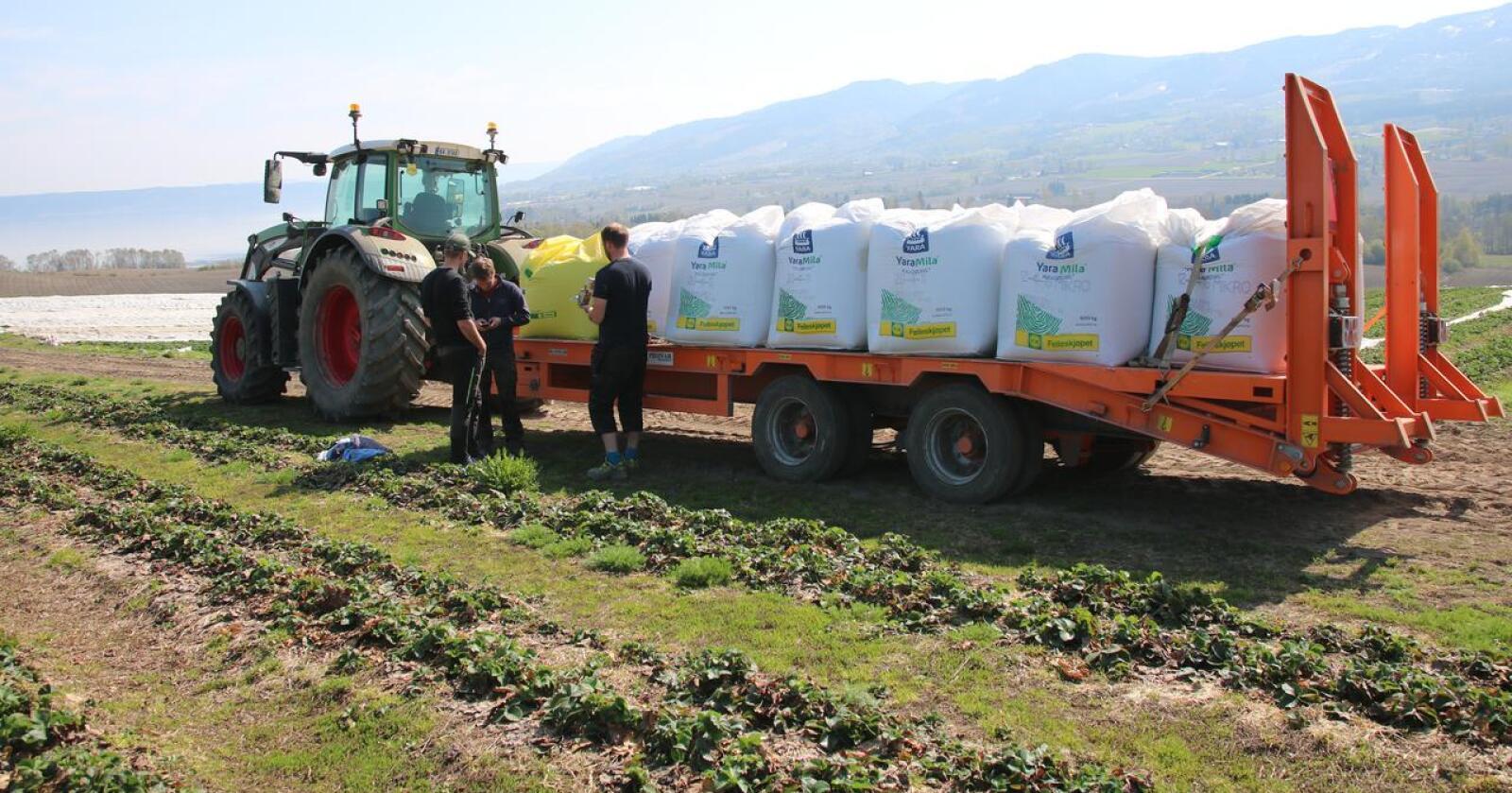 Øker: Høyere matvarepriser og energipriser internasjonalt har gitt 30 prosent høyere pris på standard NPK-gjødsel. Arkivfoto: Norsk Landbruk