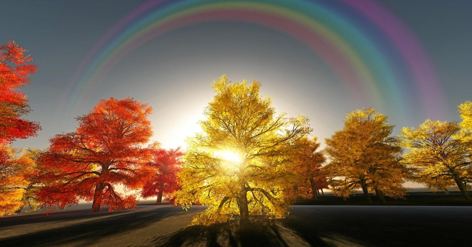 Over regnbuen: Mister vi troen på politikken som middel til å oppfylle drømmen om en bedre og mer rettferdig verden – da er vi ille ute. Foto: Bruce Rolff / Mostphotos