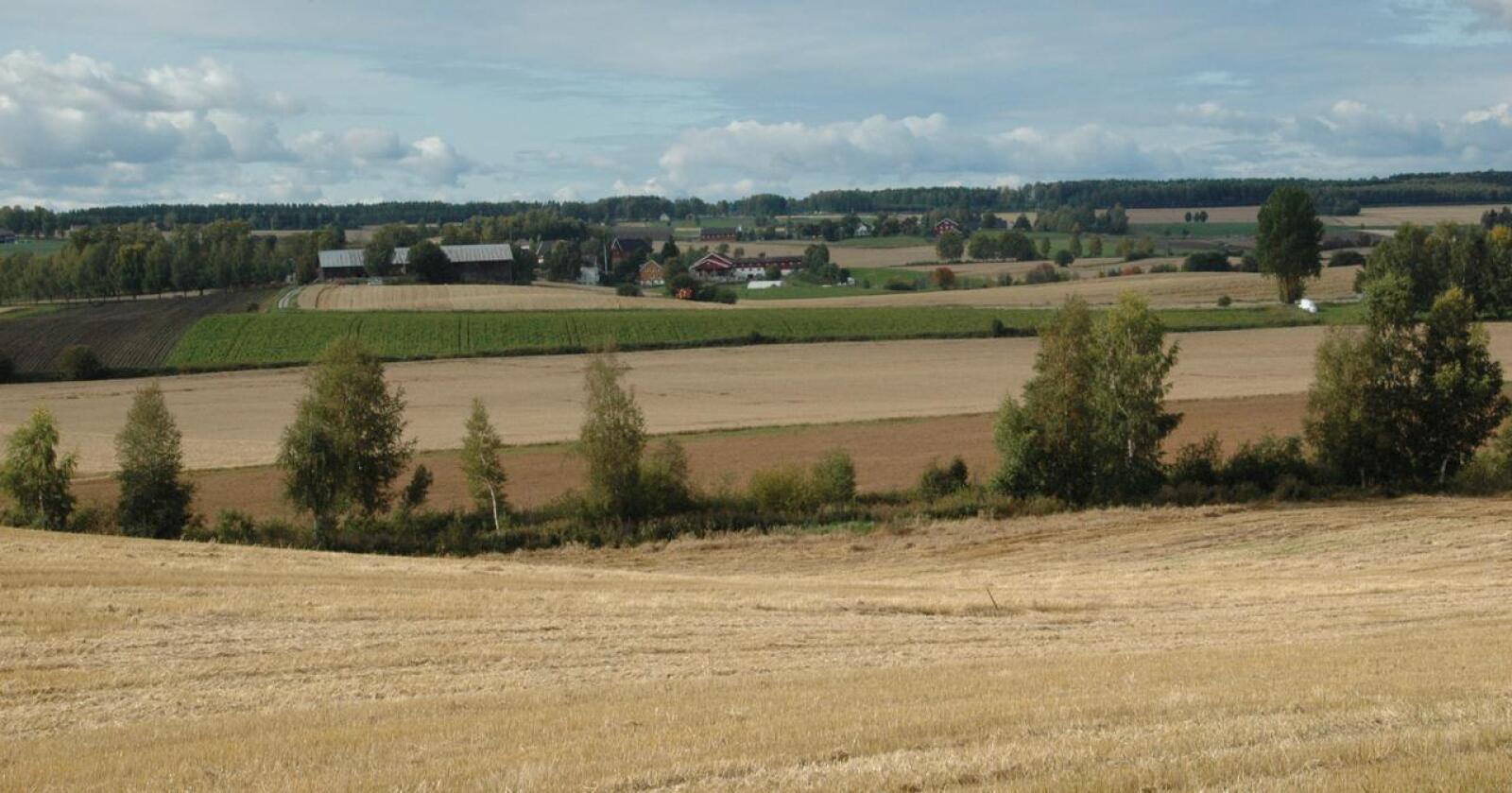 Stadig færre: Den lange utviklingstrenden med færre og større gårdsbruk, fortsatte i 2020. Gjennom det siste tiåret, er hvert sjette gårdsbruk blitt nedlagt. (Foto: Lars Olav Haug)