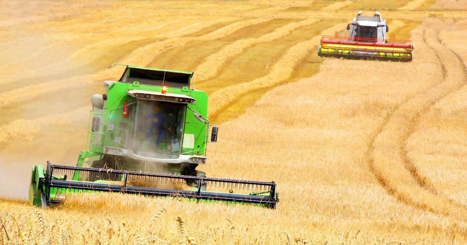 Økt korneksport: Tradisjonelt har Kasakhstan solgt kornet til nabolandene Kaukasus, Afghanistan og Iran. De siste årene har eksporten økt til andre land. Foto: kazakh-zerno.kz