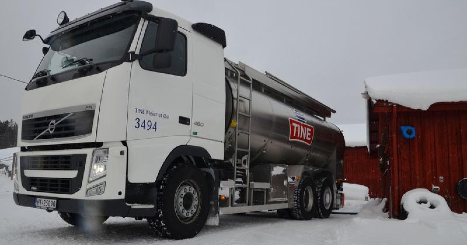 Fra 2016 til 2017 gikk ytelsen ned åtte kilo melk per årsku. Direktør Johnny Ødegård i Tine tror fôrkvaliteten og kvotestørrelsen er årsaker til nedgangen i 2017. (Arkivfoto)