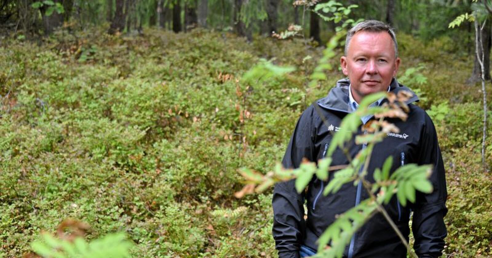Olav Veum er styrelder i AT Skog. Han forteller at et stort flertall av medlemmene i både AT Skog og Vestskog er positivt innstilt til en sammenslåing av de to samvirkene. Foto: Tone C. S. Thorgrimsen