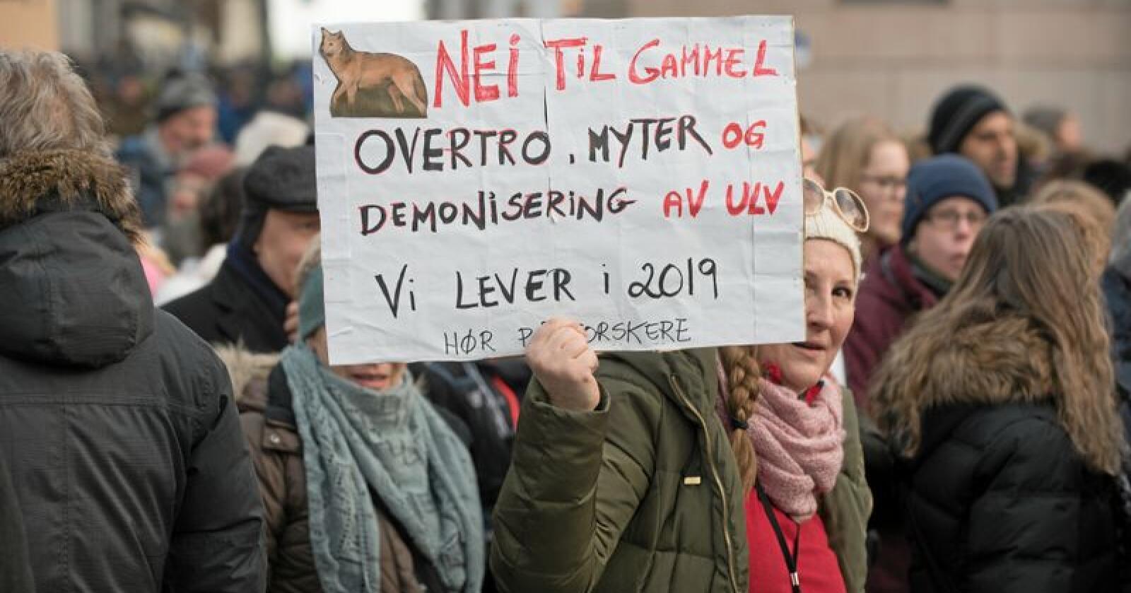 Pro ulv: Demonstrasjon for ulv utenfor Stortinget. Foto: Vidar Sandnes