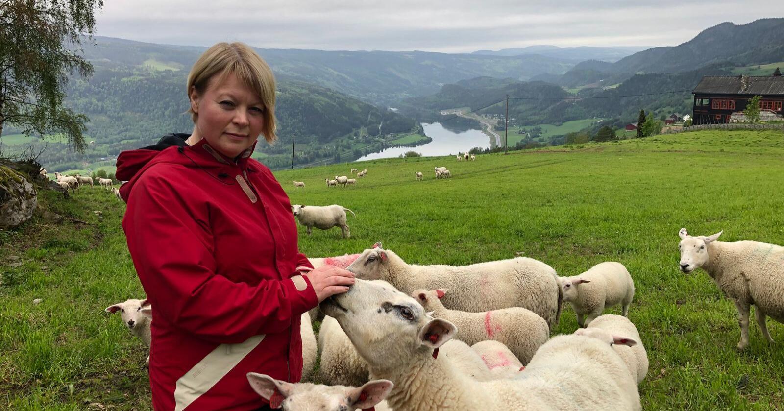 Marthe Lang-Ree er nestleiar i Norsk Sau og Geit. Ho meiner tilbodet ikkje er godt nok, og håper på brot i forhandlingane. Foto: Privat