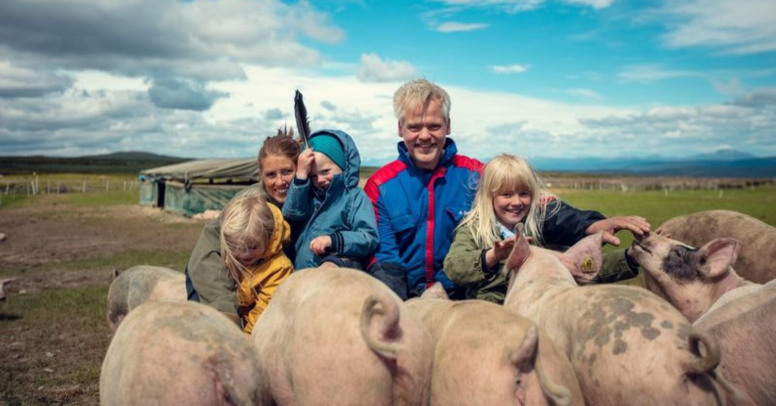 Ragnhild, Knut og barna Sigrid, Birger og Olea trives blant fjellgrisen høyt oppe i Valdres. Foto: Bård Gundersen