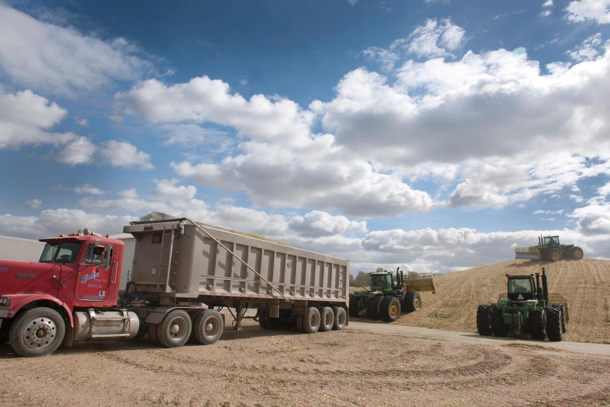 Denne måneden starter frihandelsforhandlingene mellom Efta og landbruksgiganten Mercosur. Blant medlemslandene er Brasil og Argentina. (Foto: Marcus Pasveer)