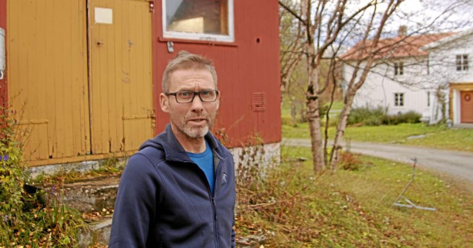 Leder for det interkommunale fellingslaget i Nord-Østerdalen, Jo Esten Trøan, fikk en hektisk sommer i fjor, da ulveangrep førte til at nærmere 1000 sau og lam ble revet av ulv i området. Foto: Svein Egil Hatlevik