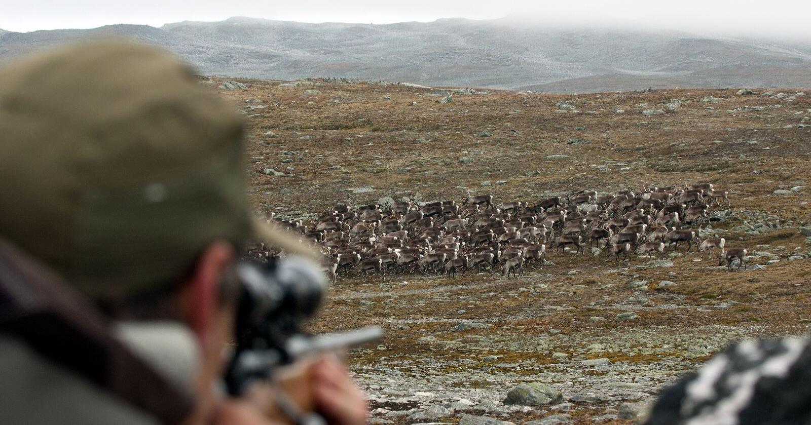 I 20 år har Norskog kjempet for å få fjernet moms på jakt og fiske for private grunneiere. Illustrasjonsfoto: Vegard Lødøen