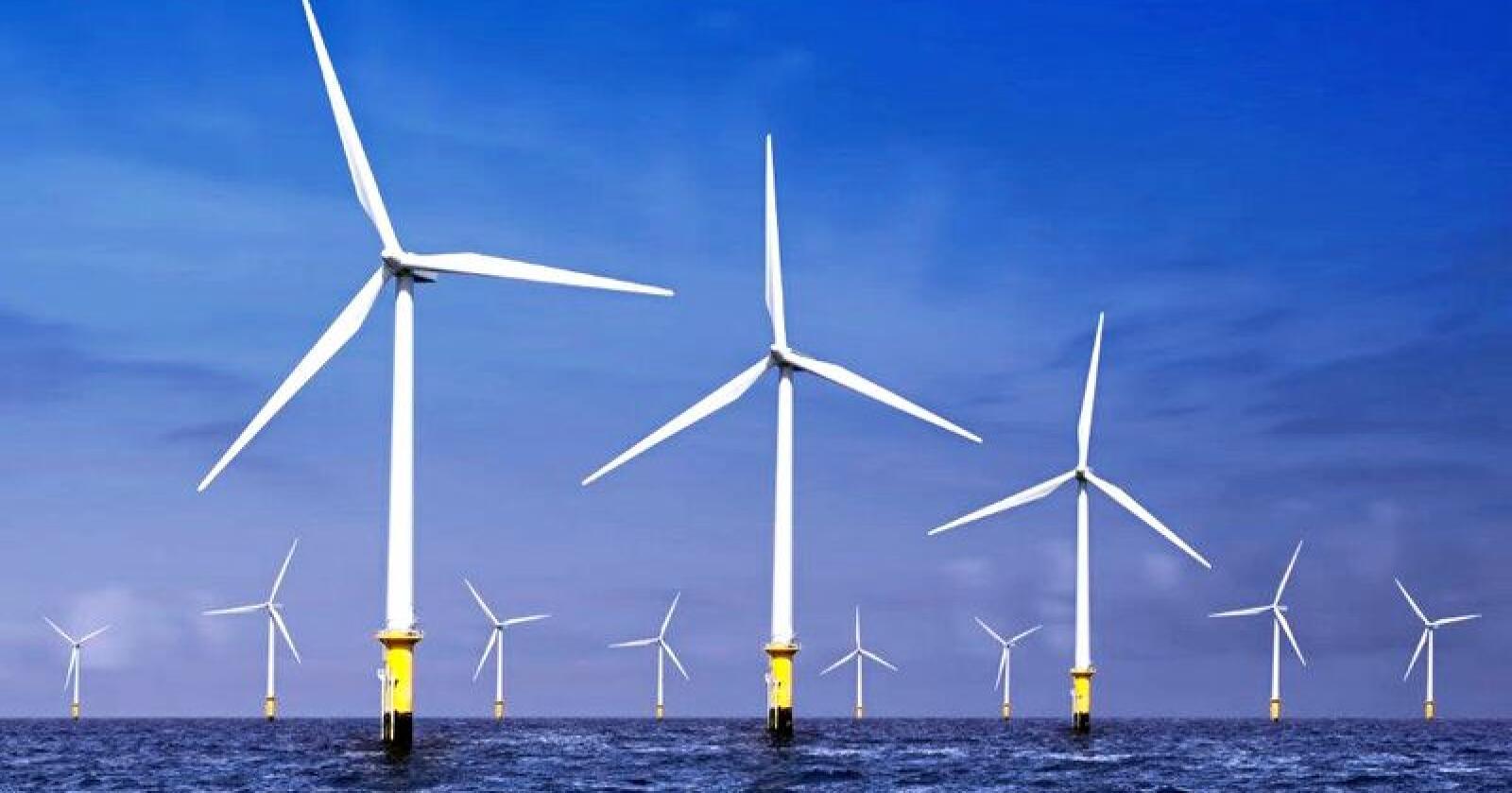 Havforskarar er skeptiske til planane om eit vindkraftanlegg utanfor finnmarkskysten. Foto: Colourbox