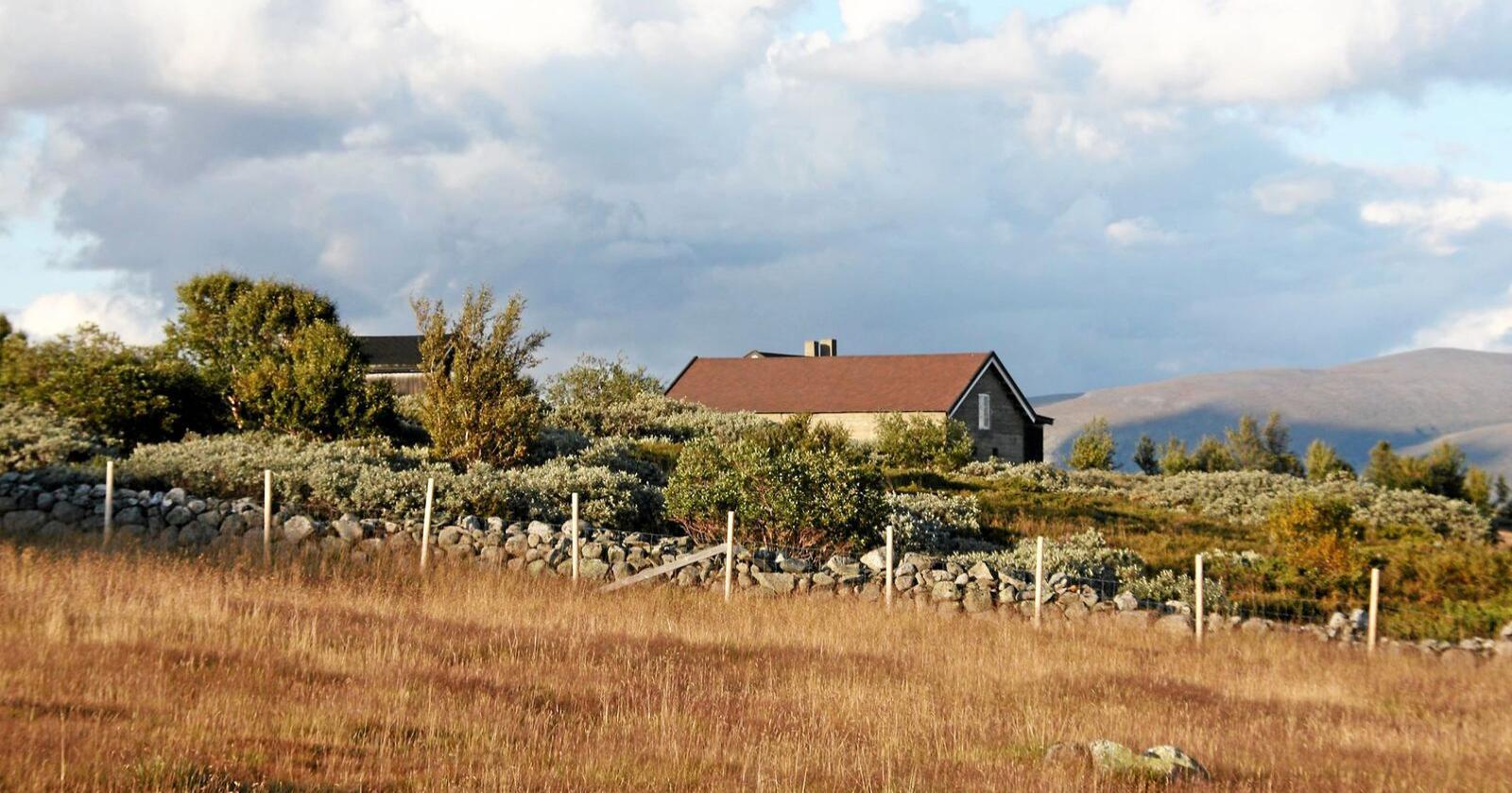 Må rives: De tre bygningene på Bentdalsetra (bildet) i setergrenda Vesllie midt på Dovrefjell er av miljøstatsråd Sveinung Rotevatn (V) vedtatt revet av hensyn til villreinen i området. Foto: Ragnhild Botheim