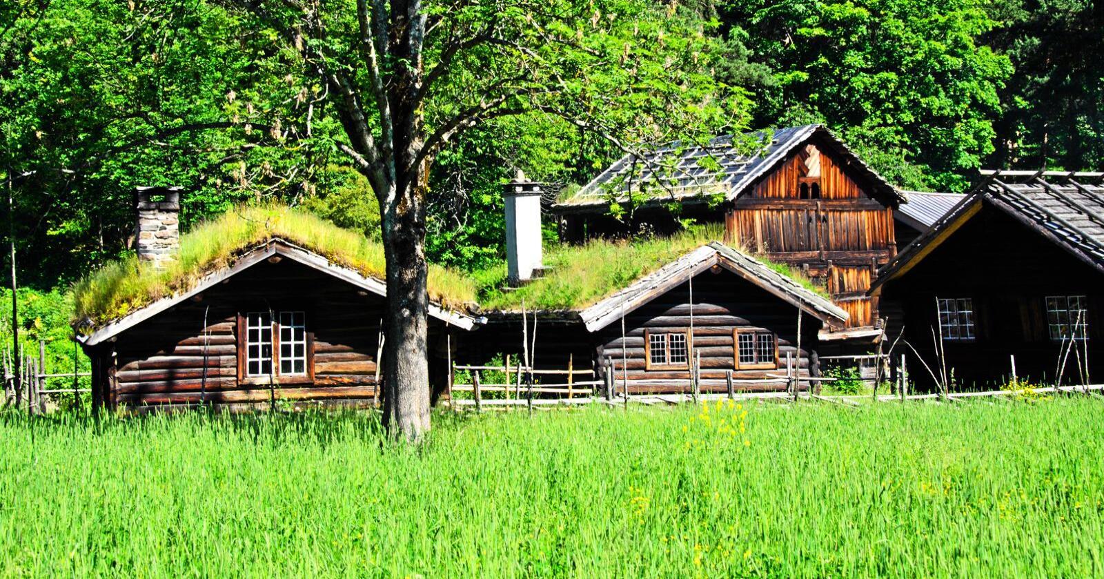 Regjeringen vil ikke snakke om hvordan den har nedprioritert kulturarven de siste åra, skriver Åslaug Sem-Jacobsen. Foto: Mostphotos