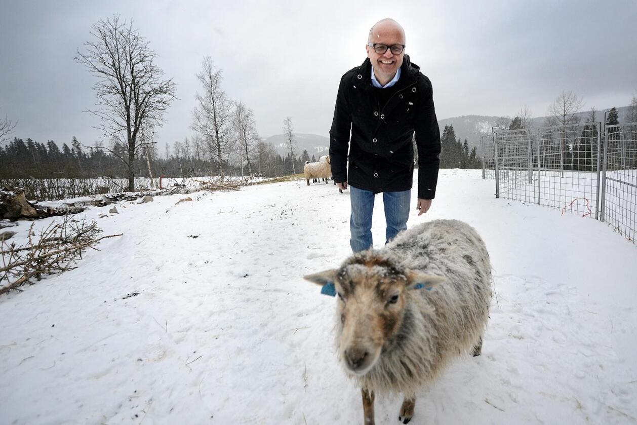 Vidar Helgesen (H), ansvarlig ulveminister, fra hans besøk hos Merete Furuberg, leder av Småbrukarlaget, for et år siden. Foto: Siri Juell Rasmussen.
